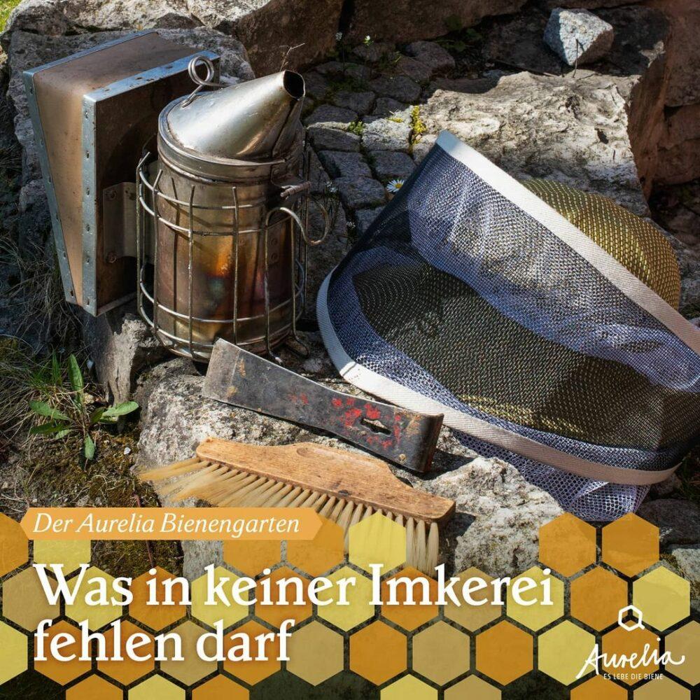 Im Aurelia Bienengarten 🐝 steht der Erstfrühling in den  ...